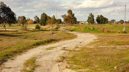 kangaloo1010%2003.jpg
