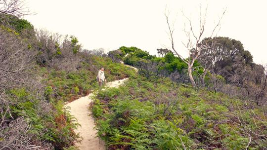 nature1210%2002.jpg