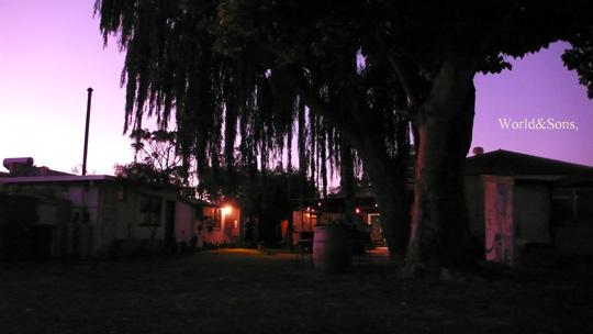 sunset0403%2000.jpg